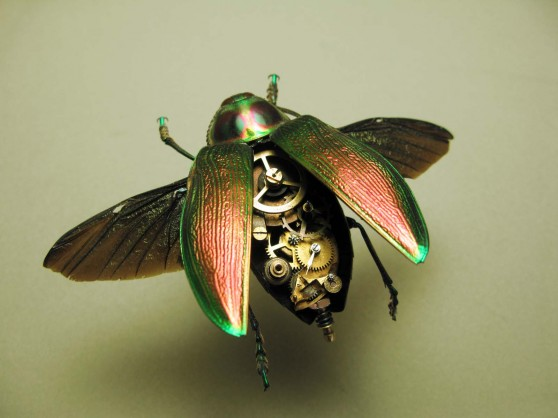Steampunk beetle from Insect Labs